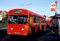 Route 240, London Transport, SMS304, EGN304J, Golders Green