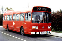 Route 255, London Transport, LS285, YYE286T, Loughton
