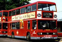 Route 296, East London Buses, T11, WYV11T, Harold Wood