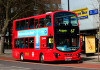 Route 67, Arriva London, HV81, LJ62BJX, Stamford Hill