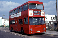 Route 273, London Transport, DMS767, TGX767M, Hayes