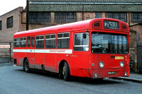 Route P1, London Transport, SMS564, EGN564J