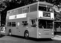 Route W21, London Transport, DMS1843, GHM834N, Walthamstow