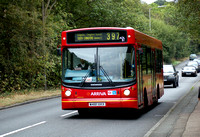 Route 397, Arriva London, ADL81, W481XKX, Loughton