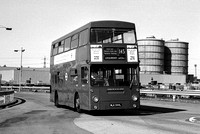 Route 145, London Transport, DMS544, MLK544L, Dagenham Fords