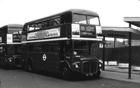 Route 55, London Transport, RM700, WLT700