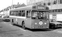 Route 205, London Transport, SMS317, EGN317J