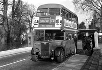 Route 75, London Transport, RT489, HLX306, Charlton