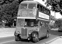 Route 205A: Epping Forest - Hammond Street [Withdrawn]