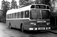 Route 334, Greenline, SNC74, TPD174M