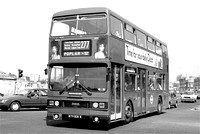 Route 277, London Transport, T531, KYV531X