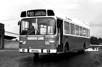 Route 493, Greenline, LNC60, NPD160L