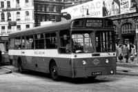 Route 503, London Transport, XMS6, JLA56D, Victoria