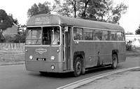 Route 250: Hornchurch, Bus Garage - Epping [Withdrawn]