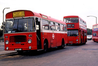Route 215, London Transport, BL55, OJD55R, Hampton Court
