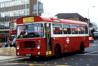 Route 215, London Transport, BL91, OJD91R, Kingston