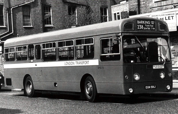 Route 238, London Transport, SMS591, EGN591J