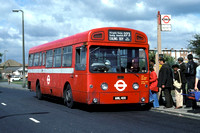 Route 273, London Transport, SM41, AML41H