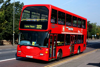 Route 202, Metrobus 483, YN53RYV, Crystal Palace