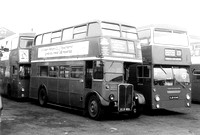 Route 135, London Transport, RT1572, KLB660, Ponders End Garage